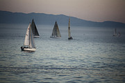 Sailboats In Water Prints - 537 cf Five Sailboats  Print by Chris Berry