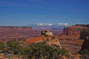 Peaceful Photo Originals - Canyonlands National Park by Mark Smith