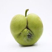 Food And Drink Art - Apple by Bernard Jaubert
