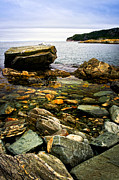 Horizon Metal Prints - Atlantic coast in Newfoundland Metal Print by Elena Elisseeva