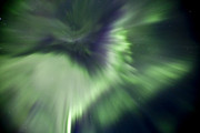 Polar Aurora Prints - Aurora Borealis Near Drayton Valley Print by Zoltan Kenwell