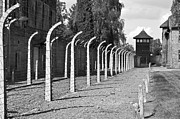 Barrack Posters - Auschwitz Birkenau concentration camp. Poster by Fernando Barozza