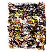 Compressed Metal Prints - Compressed pile of paper products Metal Print by Bernard Jaubert