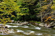 Rushing Prints - Fall along Williams River Print by Thomas R Fletcher