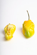 Consume Framed Prints - Habanero Chili Pepper Framed Print by Photo Researchers, Inc.