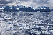 Sea Ice Prints - Icebergs Print by Jeremy Walker