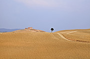 Soft Colors Photos - Tuscany by Joana Kruse