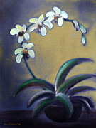 Gina Gray Paintings - White Orchids by Gina De Gorna