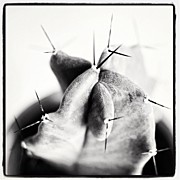 Bnw Art - Instagram Photo by Ritchie Garrod