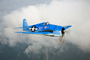 Hellcat Fighter Posters - A Grumman F6f Hellcat Fighter Plane Poster by Scott Germain