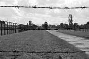 Concentration Framed Prints - Auschwitz Birkenau concentration camp. Framed Print by Fernando Barozza