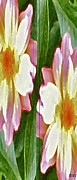 Remix Prints - Mix Or Match Flowers  Print by Debra     Vatalaro
