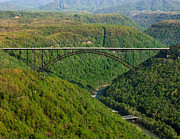 Arial View Art - New River Gorge Bridge by Mary Almond