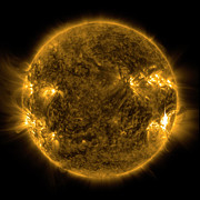 Magnetic Field Posters - Solar Activity On The Sun Poster by Stocktrek Images