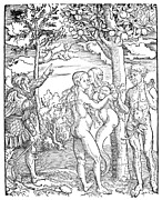 Apple Tree Drawings Posters - ADAM and EVE Poster by Granger