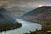 Cultivation Posters - Alto Douro Wine Region Poster by Andre Goncalves