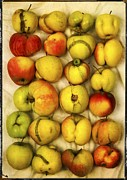 Yellow And Red Prints - Apples Print by Bernard Jaubert