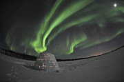 Aurora Borealis Over An Igloo On Walsh Print by Jiri Hermann