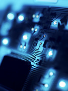 Integrated Prints - Circuit Board Print by Tek Image