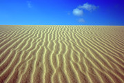 Sand Dunes Metal Prints - Desert Metal Print by MotHaiBaPhoto Prints