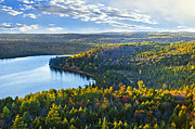 Fall Trees Posters - Fall forest and lake Poster by Elena Elisseeva