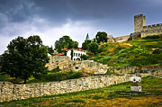 Tours Metal Prints - Kalemegdan fortress in Belgrade Metal Print by Elena Elisseeva