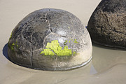Solid Art - Moeraki Boulders, Koekohe Beach, New by Richard Roscoe