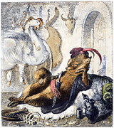 The Hen Posters - Reynard The Fox, 1846 Poster by Granger