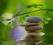 Zen Photos - Stones by Kristin Kreet