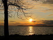 Chesapeake Bay Region Framed Prints - Sunset Chesapeake Bay Framed Print by Valia Bradshaw