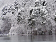 Lake Photos - 8000-Snowscape by Martha Abell