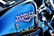 Harley Davidson Art - 883 by Frank Larkin