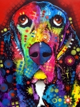 Colorful Animal Paintings - Basset Hound by Dean Russo