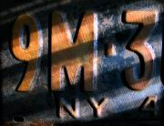 License Plates Prints - 9 M Print by Colleen Kammerer