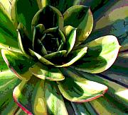 Floral Photos Metal Prints - Nature Series Metal Print by Ginger Geftakys