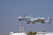 Usaf Metal Prints - A-10 Gear Up Metal Print by Tim Mulina