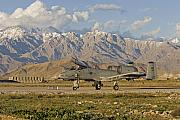 Airplane Prints - A-10 Warthog at Bagram Print by Tim Grams