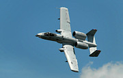 Military Photo Metal Prints - A-10 Warthog Metal Print by Murray Bloom