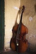 Double Bass Prints - A An Double Bass In The Corner Of A Room Print by Monk