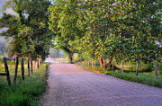 Country Dirt Roads Photo Posters - A Beautiful Sparks Lane Morning Poster by Thomas Schoeller