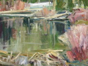 Beaver Pond Paintings - A Beaver Pond by Thomas Wezwick