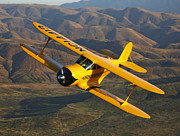 Flight Prints - A Beechcraft D-17 Staggerwing In Flight Print by Scott Germain