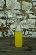 Lemons Photo Framed Prints - A Bottle Of Limoncello Sits On A Picnic Framed Print by Todd Gipstein