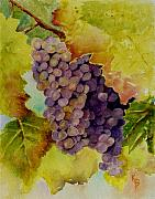 Grapes Paintings - A Bunch of Grapes by Karen Fleschler