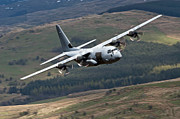Royal Air Force Posters - A C-130 Hercules Of The Royal Air Force Poster by Andrew Chittock