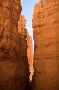 Canyons Photos - A Canyon Reflects Red Light Bouncing by Taylor S. Kennedy