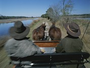 Dirt Roads Photos - A Carriage Pulled By Two Horses Follows by Michael Melford