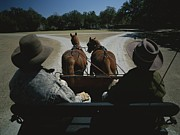 Dirt Roads Photos - A Carriage Pulled By Two Horses by Michael Melford
