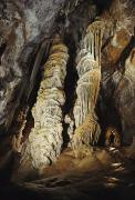 Stalactites Prints - A Caver Is Dwarfed By Giant Calcite Print by Michael Nichols