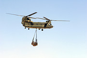 Netting Prints - A Ch-47 Chinook Of The Royal Air Force Print by Andrew Chittock